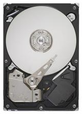 Seagate ST3500413AS (500 gb)